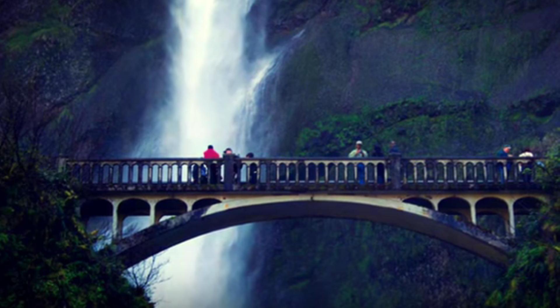 Visit Corbett Falls tour by tempo traveller