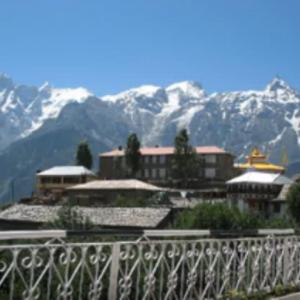Shimla tour by tempo traveller