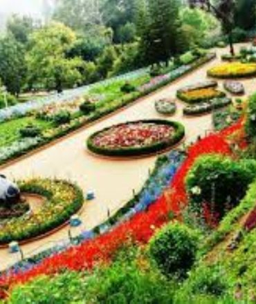 place to visit chandigarh1