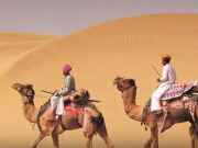 Camel Safari tour by tempo traveller